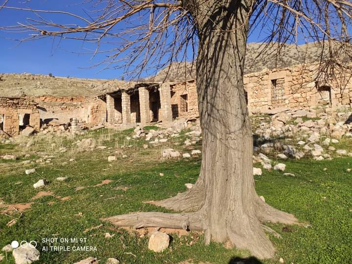 Şeyh Seyda El-Cezeri (k.s) Mardin Dargeçit Akça köyü (izar ) deki küliyesi