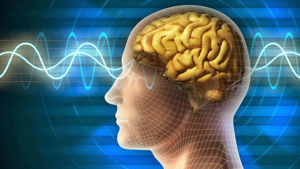 Apilepsi İle Yaşamak