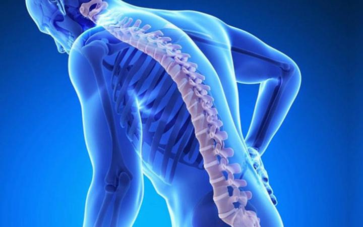 Kemik Sağlığının Korunmasında Yararlanılan Doğal Destekler
