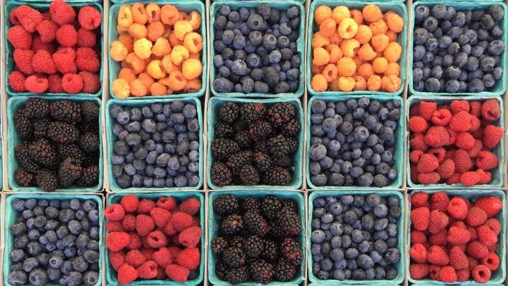 Koyu Renkli Meyveler Görüşümüzü Etkiler mi