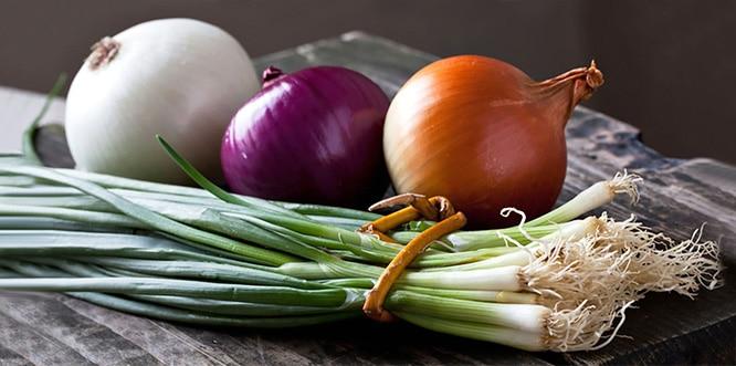Soğan, Kalp ve Damar Hastalıklarından Koruyor